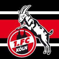 1 Fc Köln Handyhüllen Und Mehr Bei Deindesign