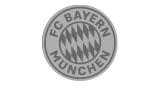 FC Bayern München Handyhüllen