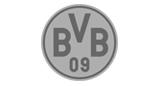 Borussia Dortmund Handyhüllen